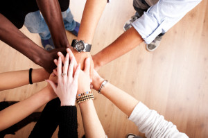 How to Build a Better Team: Trust, Mindfulness, and Flexibility