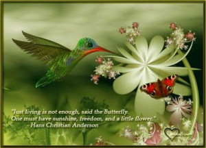 Butterfly Quotes (38)