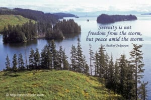 ... not freedom from the storm, but peace amid the storm. ~ Author Unknown
