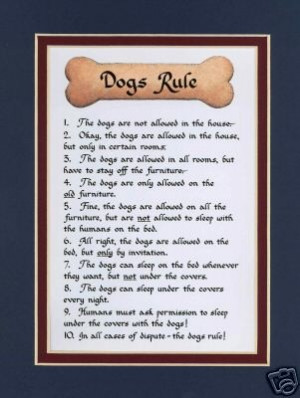 dogs dog poetry 4 by patricia dog poetry 1 by patricia molly poetry ...