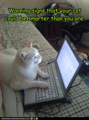 Lol Cats Smart