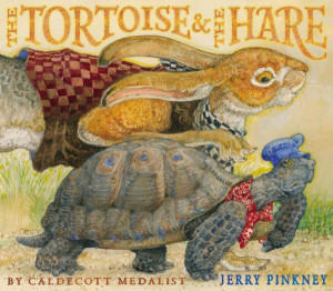 The Tortoise & the Hare