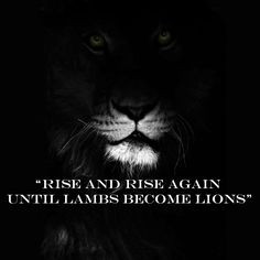 ... again until lambs become lions. Quote from the movie