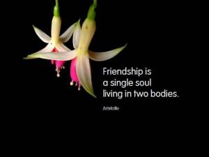 ... friendship quotes, friendship famous quotes, famous quotes friendship