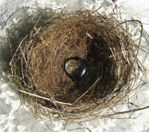 These are the amazing mother day poems the feathered nest Pictures
