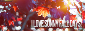 Love Sunny Fall Days Facebook Cover