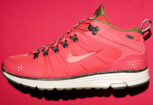 2010 nike dynamic support