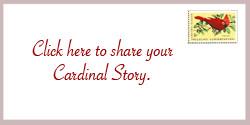 Quotes Birds Cardinals ~ Cardinal Superstitions