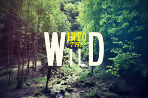 ... at customs. Important Quotes into the Wild . Into the Wild Excerpt