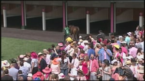 Fun facts about the Kentucky Derby   Sports - WLKY Home