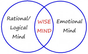 Mindfulness is balancing emotion mind and wise mind.