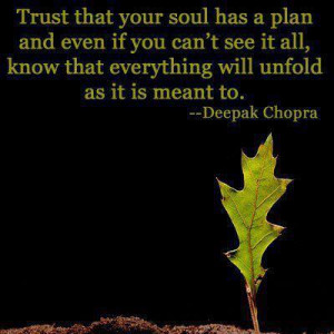 Trust that your soul has a plan and even is you can't see it all, know ...