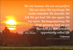 We Are Human. We Are not Perfect We Are Alive. We Try Things We Make ...