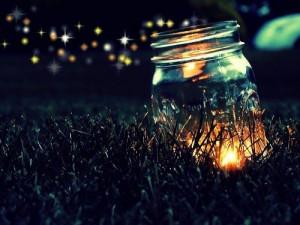 lightning-bug-jar