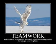Quotes for the Workplace | quotes teamwork quotes teamwork quotes ...