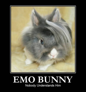 Funny Emo (6)