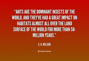 Quote About Ants