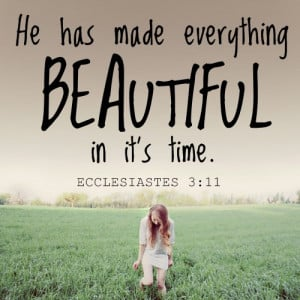 He has made everything beautiful in it's time.