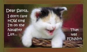 Dear Santa christmas christmas quotes christmas quote santa funny ...