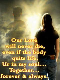 true love true love true love true love true love true love