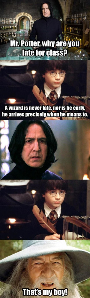 wizard is never late, nor is he early, funny harry potter quotes