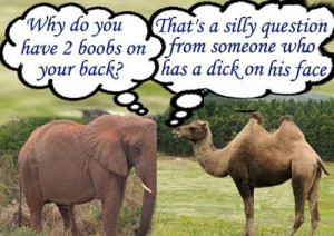 elephant and camel arguement