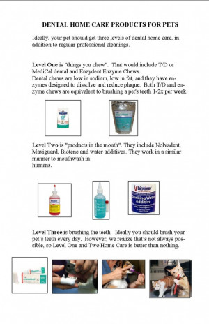 dental quotes 2011 book style with home care info page 4 re HOME CARE