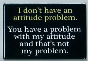Attitude Problem FRIDGE MAGNET funny quote bad personality behavior ...