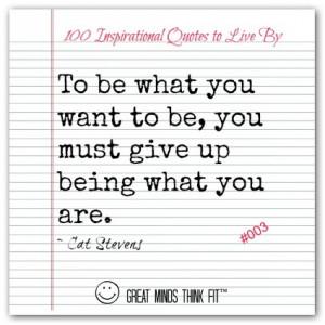 Cat Stevens Quote #003