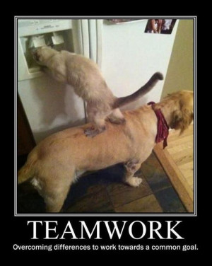 Teamwork Quotes For The Office