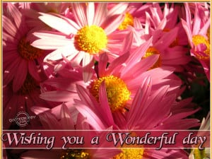 Wishing You a Wonderful Day ~ Good Day Quote
