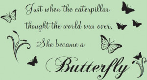 Butterflies-Quote-Wall-Sticker-Just-When-The-Caterpillar-She-became-a ...