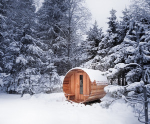 ... would cut off a limb for this: Wood burning cedarwood sauna from a kit