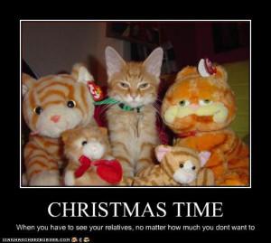 ... christmas cat photos and angry cat hates christmas 10 christmas funny