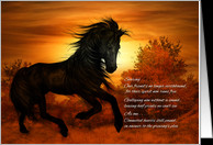 Loss of Horse Sympathy Cards
