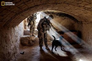 Army Staff Sgt. Jason Cartwright with his Labrador retriever, Isaac ...
