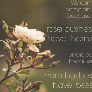 Every rose has its thorns quote