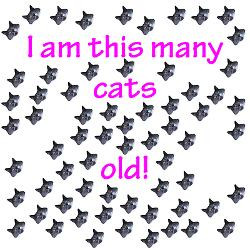 65_cats_old_greeting_card.jpg?height=250&width=250&padToSquare=true