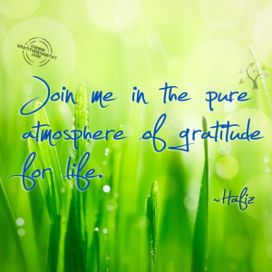 ... Quotes, Hafiz Quotes, Awesome Quotes, Poetry Quotes, Grateful, Quotes