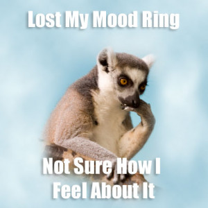 ... bizarrebytes com new internet meme lamenting lemur thoughtful quotes