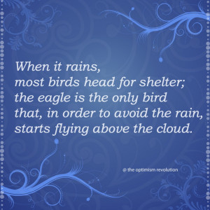 ... Bird That, In Order To Avoid The Rain, Starts Flying Above The Cloud