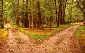 Inspirational Quotes About Life | Life is a fork in the road
