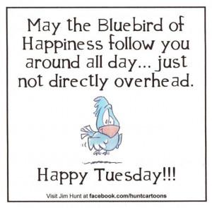 Happy Tuesday