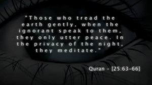 quran-quote-peace-meditate