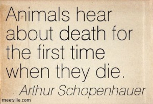 Schopenhauer Quotes Animals Photos | Arthur Schopenhauer : Animals ...