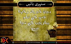 ... -%5B-urdu-quotes-%5D-mout-ko-yaad-rakhna-urdu_quotes_sayings_40.jpg
