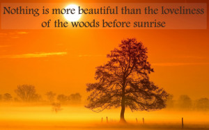 nice quotes for sunrise and good morning best wallpaper