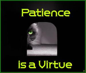 Patience+is+a+Virtue.jpg