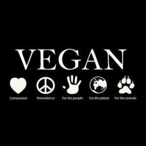 Happy World Vegan Day!!!
