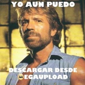 Chuck Norris Meme - Quotepaty.com
